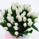 Как правильно выбрать цветочную композицию в скорбный день: секреты флориста