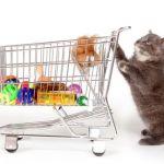 Как правильно выбрать зоомагазин
