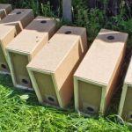 Основные особенности и виды пчелопакетов