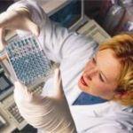 Почему стоит сдавать анализы в лаборатории synevo