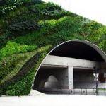 Вертикальные сады в компании Le Green