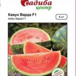 Заказ семян через онлайн-сервисы - выбор современного садовода