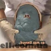Голубая кембрийская глина изображение 2