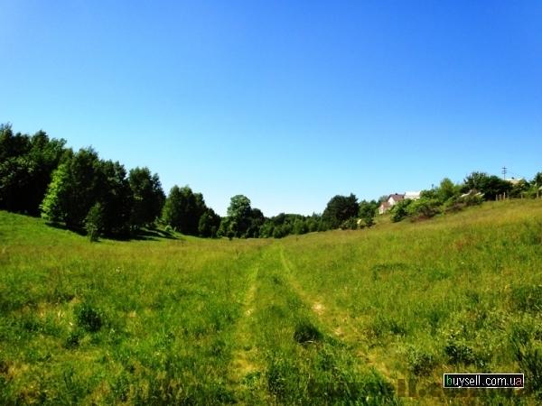 участок от 12 до 36 соток  Кренычи,  18 км от Киева по Новообуховской изображение 2