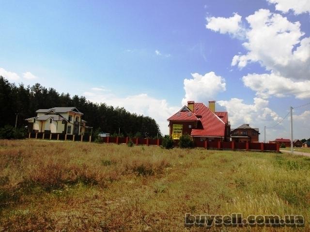 11 га под строительство,   Березовка,   Киев 17 км возле леса,   траса