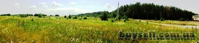 11 га под строительство,   Березовка,   Киев 17 км возле леса,   траса изображение 2