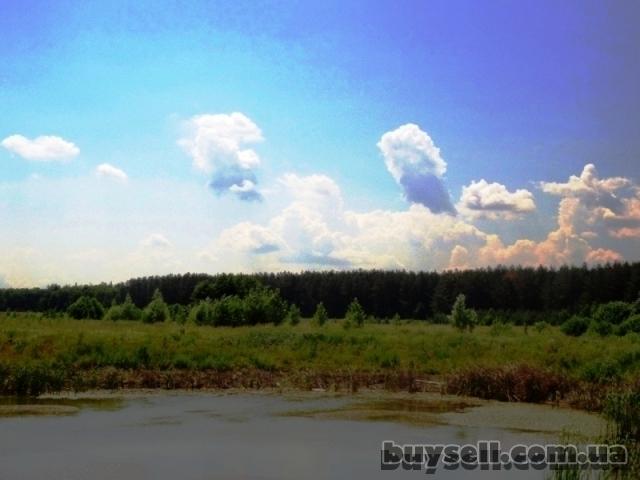 11 га под строительство,   Березовка,   Киев 17 км возле леса,   траса изображение 5