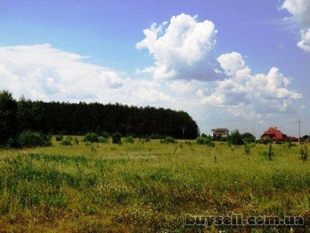 11 га под строительство,   Березовка,   Киев 17 км возле леса,   траса изображение 3