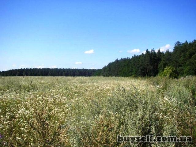 участок от 10 соток под строительство в Березовке 17 км от Киева