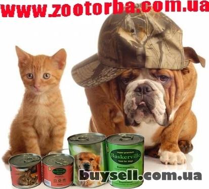 Зоомагазин Зооторба забота о Ваших домашних питомцах ! изображение 3