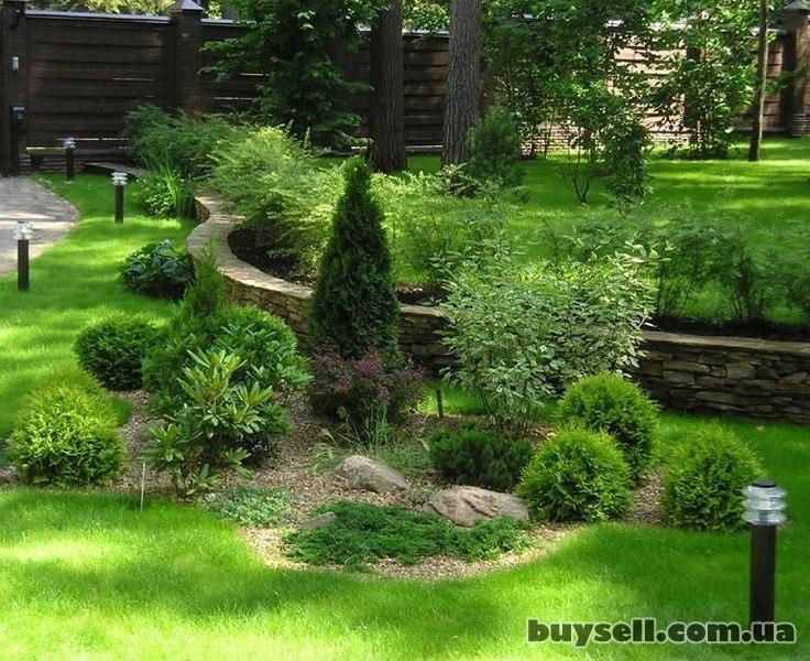 Ландшафтный дизайн,  благоустройство территорий,  озеленение изображение 2