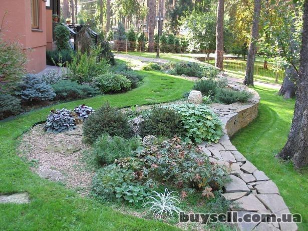 Ландшафтный дизайн,  благоустройство территорий,  озеленение изображение 3