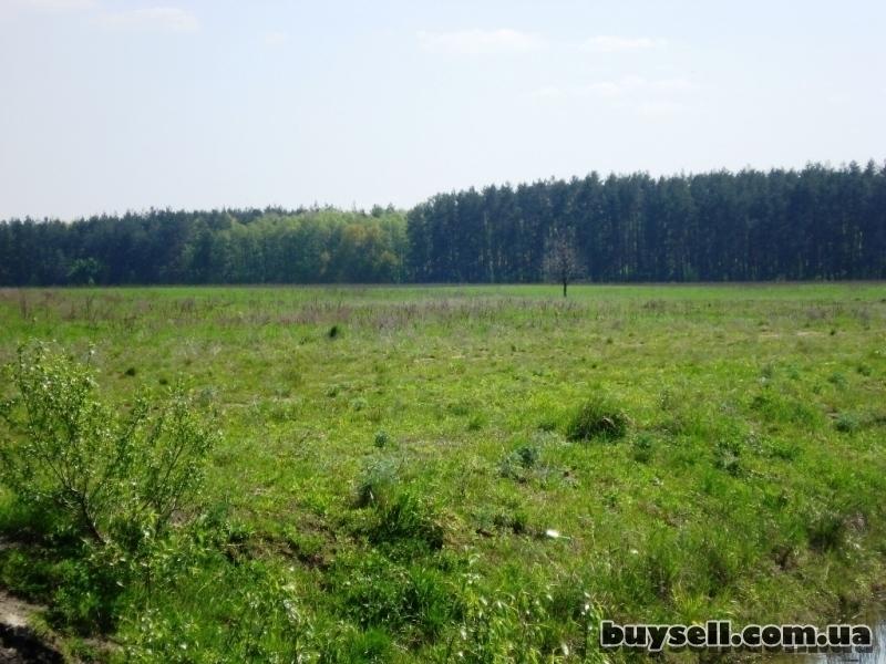 Продам участок 2 га  под строительство в Березовке 17 км от Киева по Ж