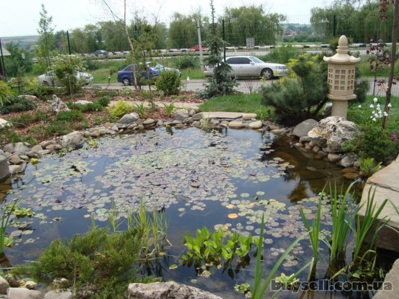 Ландшафтный дизайн дачного участка водоемы ручьи каскады. изображение 2