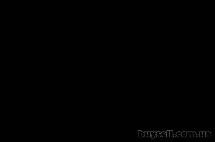 Путевки в ДОЛ Фристайл кэмп с английским под Киевом в Пуща Водица лето