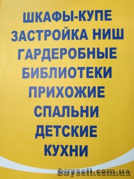 Изготовление корпусной мебели по  Индивидуальному проекту Харьков. изображение 2