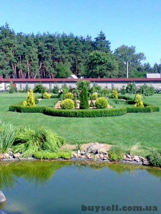 Озеленение.    Газоны,    альпинарии,    водоемы Харьков и обл. изображение 5