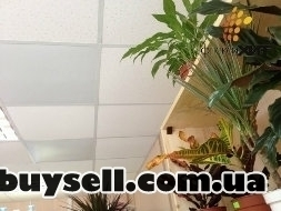 Пленочные потолочные обогреватели «ФлексиХИТ» изображение 4