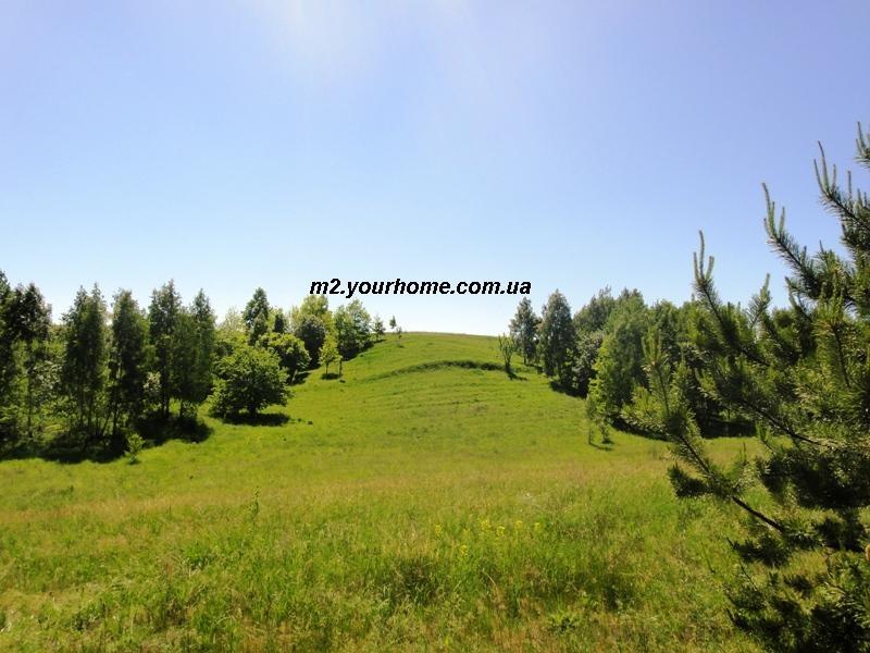 участок от 12 до 36 соток  Кренычи,  18 км от Киева по Новообуховской изображение 4