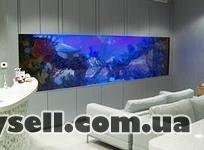 """аквариумный салон """"нептун"""" изображение 5"""