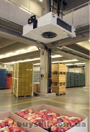 Холодидьные камеры для хранения яблок