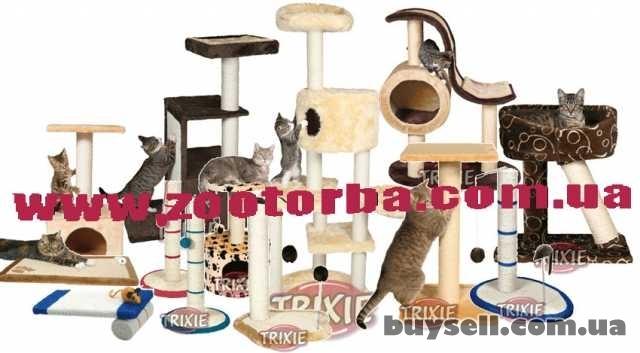 корма  для кошек и собак ,аксессуары ,товары для животных изображение 3