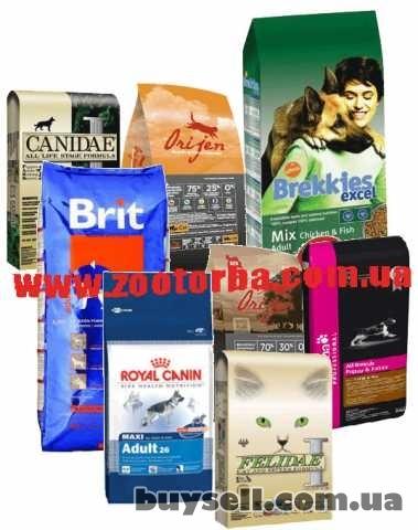 корма  для кошек и собак ,аксессуары ,товары для животных изображение 5