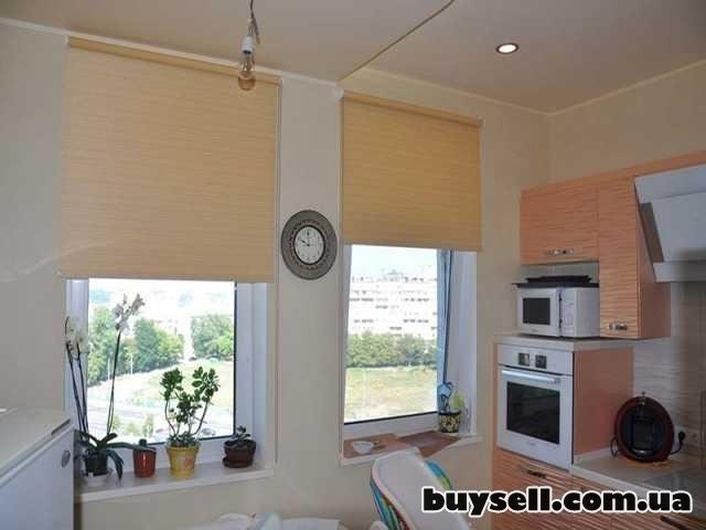 Рулонные шторы, тканевые ролеты изображение 2
