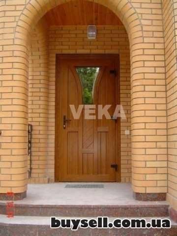 Двери входные и металопластиковые изображение 2