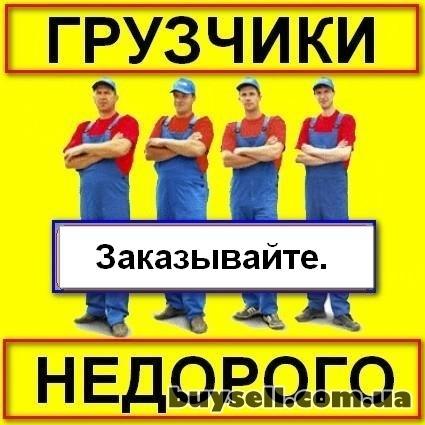 Услуги грузчиков не дорого. изображение 2