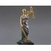 Адвокатская помощь при возврате водительских прав,  при незаконном выс
