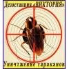 Уничтожение тараканов в Алматы и обл.   Дезостанция «ВИКТОРИЯ»
