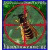 Борьба с осами,  уничтожение осиных гнёзд.  Избавим 100%.  Алматы и об