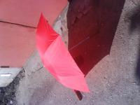 Зонт красного цвета