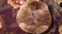 Шапка з морської видри