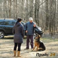 Дрессировка собак в Броварах и Броварском р-е