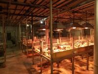 Продается ферма 2000 м. кв Старобешево, Донецкая область